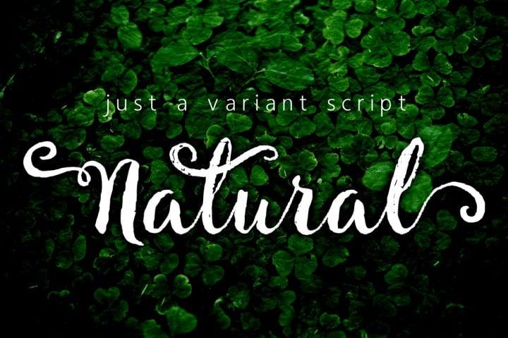 Free Script Font - Natural