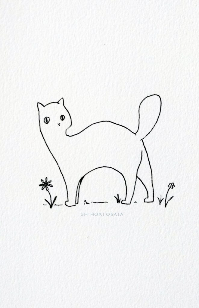 Cat Drawing Doodle
