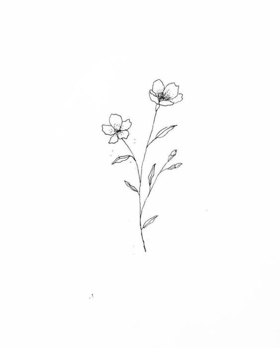 Simple Wildflower Drawing