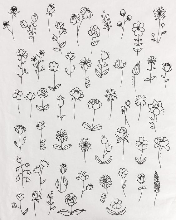 Lots of Flowers - Drawing