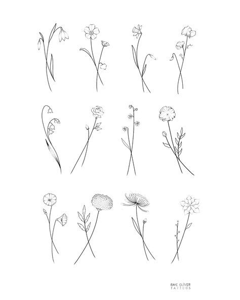 Flower Set Drawing