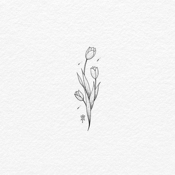 Tulip Flower Drawing