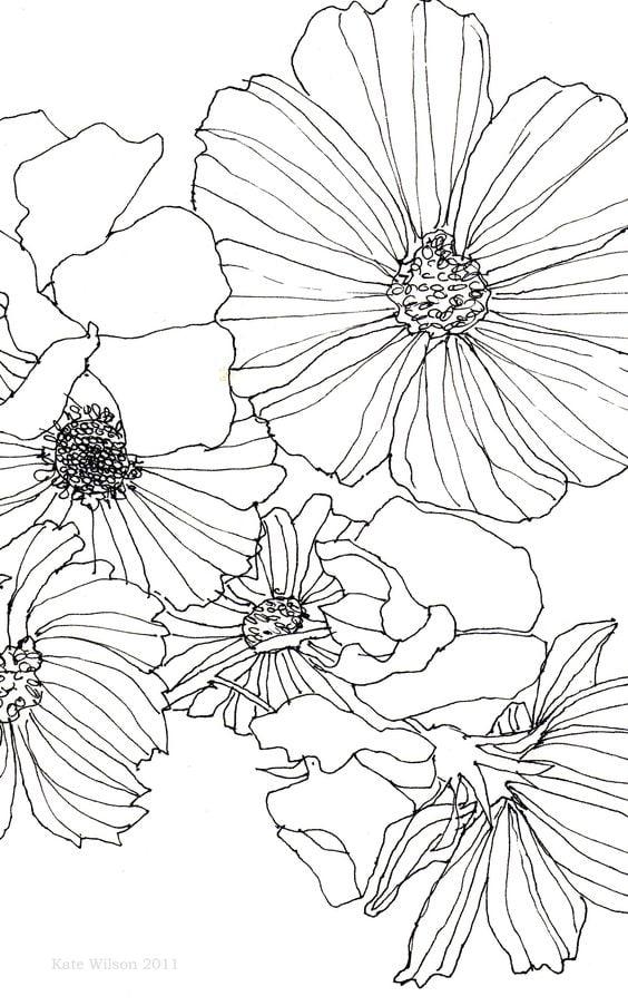Flower Drawing idea