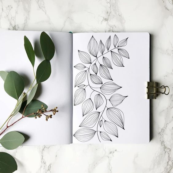 Plant Drawing Ideas
