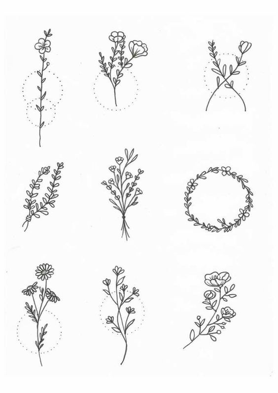 Botanical Leaf Drawing Ideas