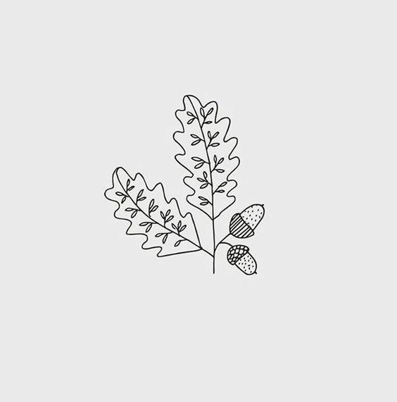 Oak Leaf Drawing