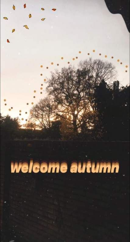 Autumn - Season Instagram Stories