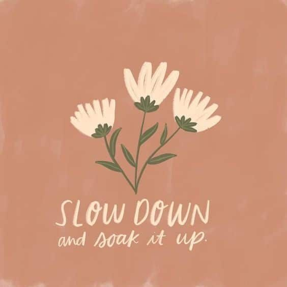 Slow Down Quote for Instagram