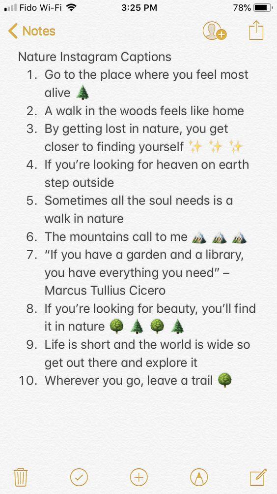 Nature Instagram Captions