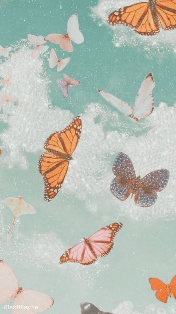 Aesthetic Butterfly Phone Wallpaper