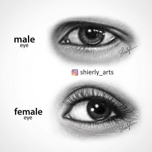 male and female eyes