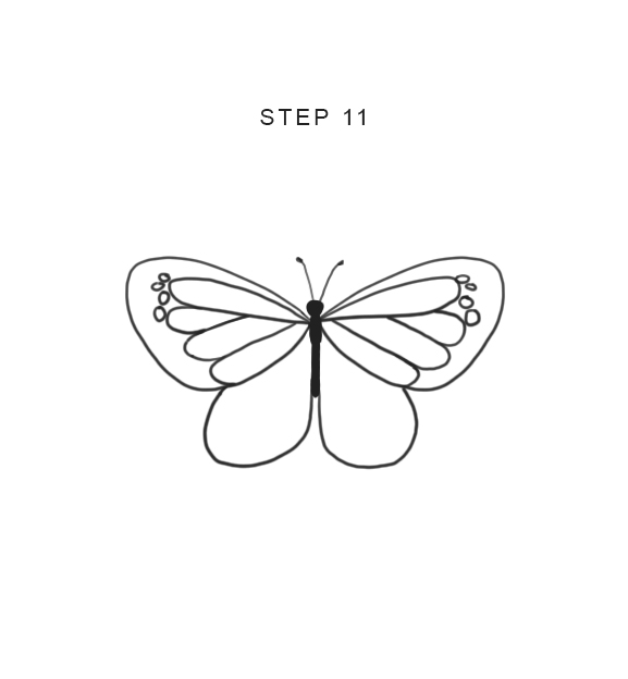 how to draw butterfly easy