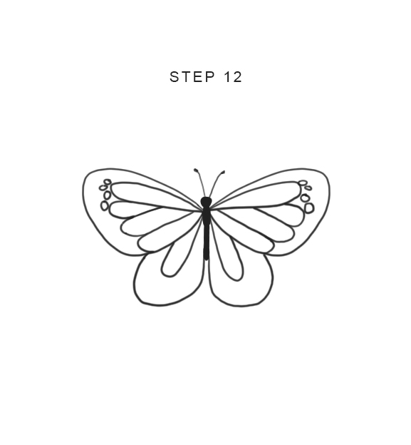 how to draw a butterfly easy