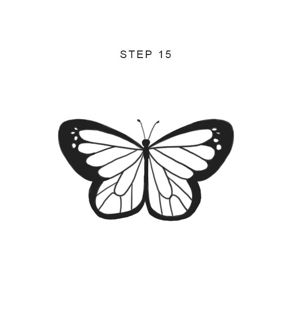 draw a butterfly