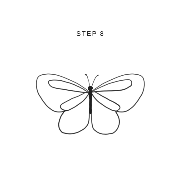 how to draw butterfly