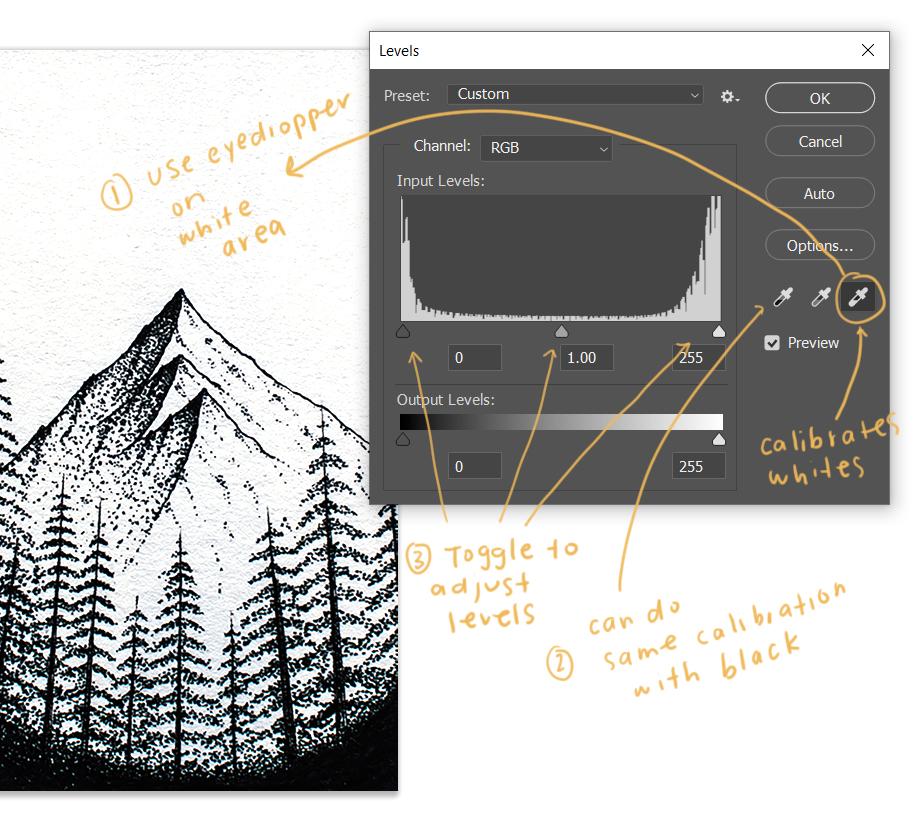 adjust white or black levels photoshop