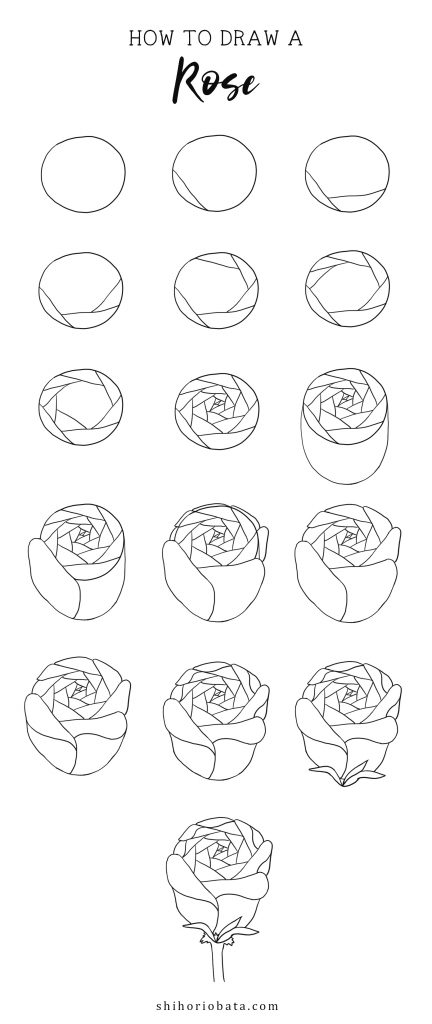 rose drawing step by step tutorial