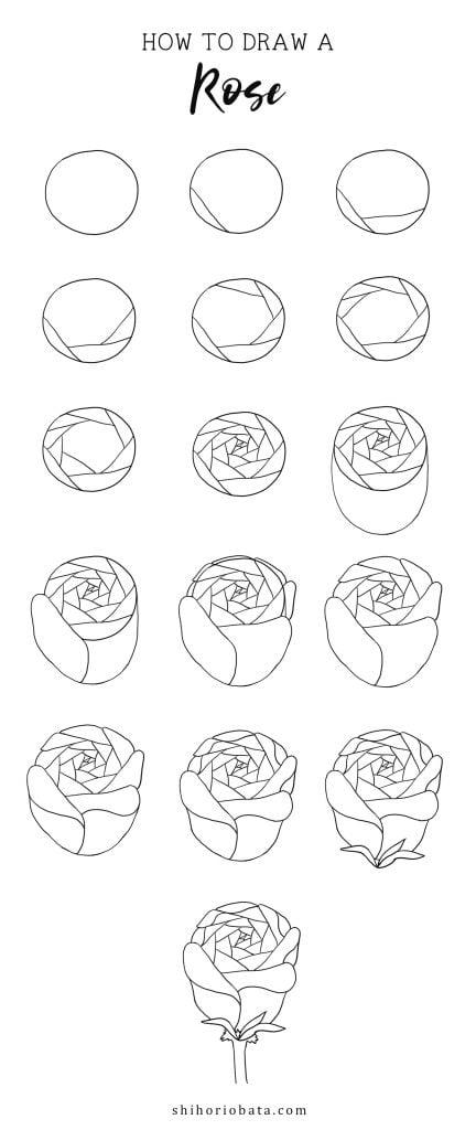 rose drawing step by step tutorial