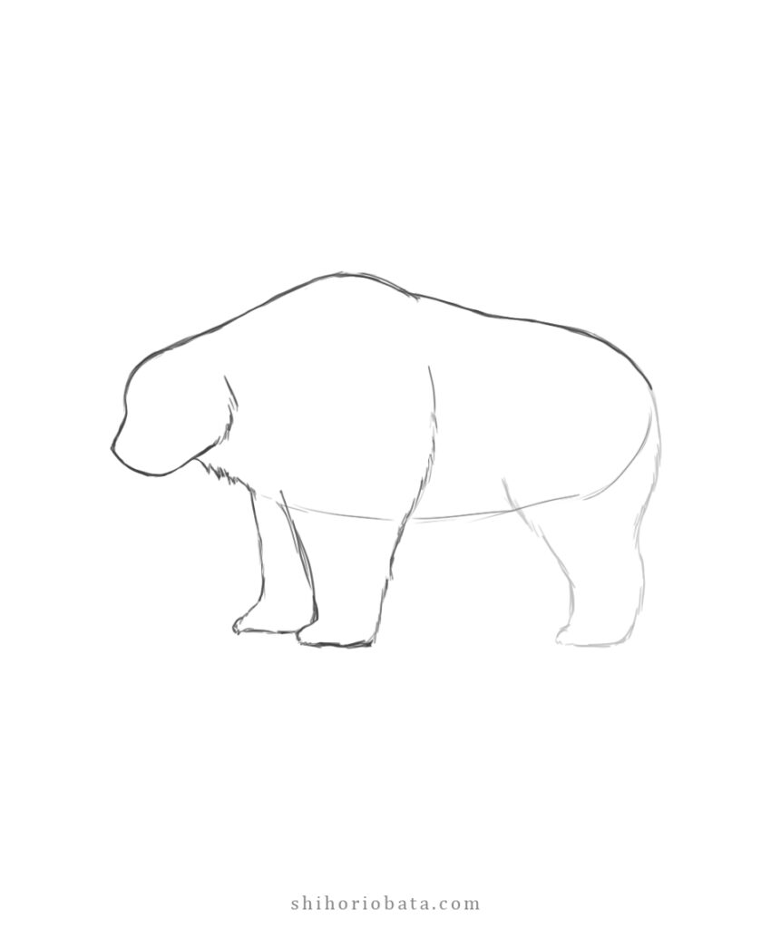 easy bear drawing