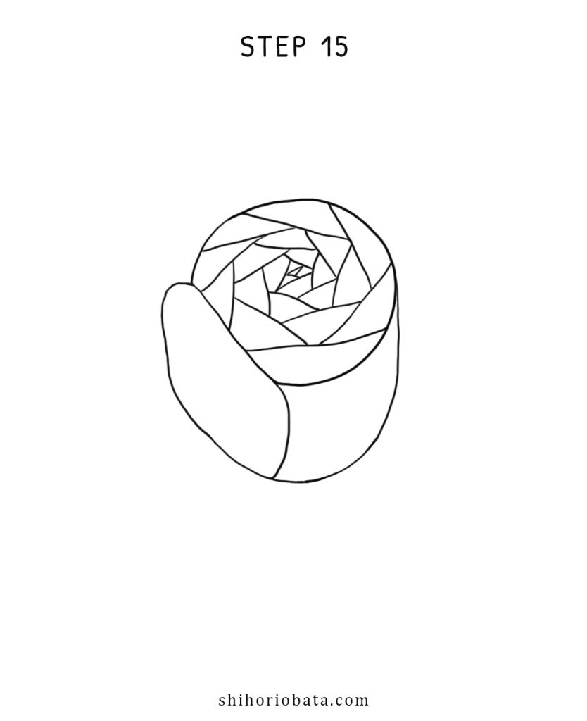rose drawing step by step