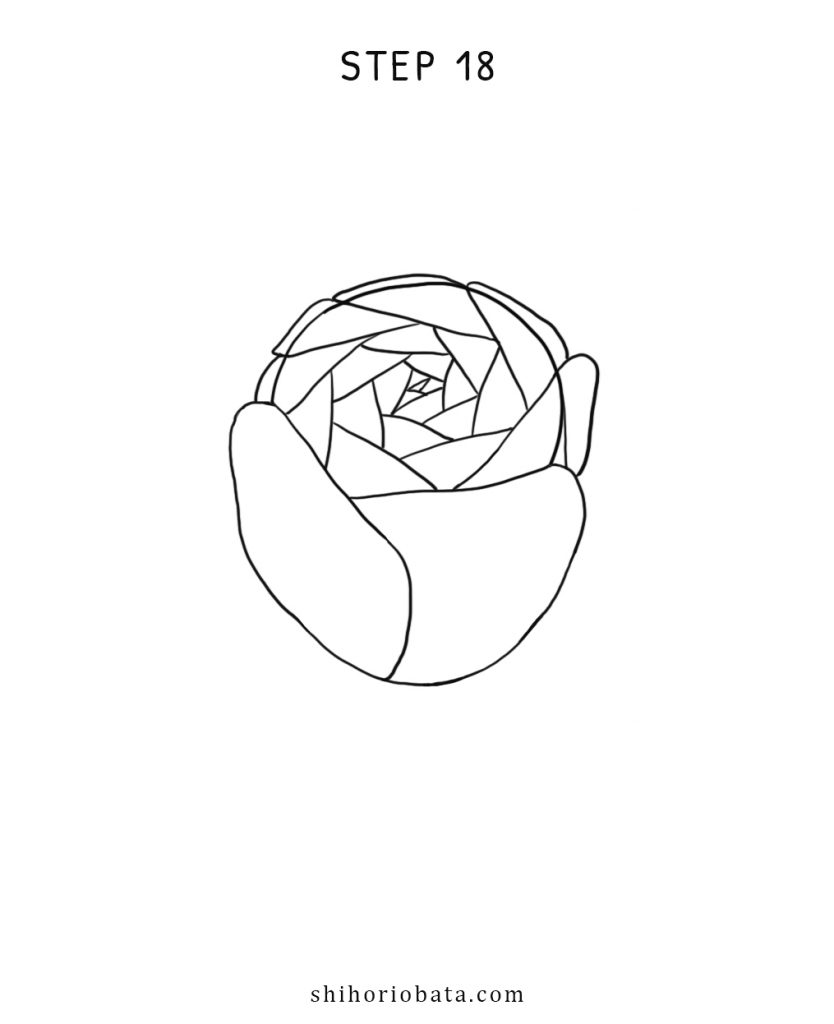 simple rose drawing