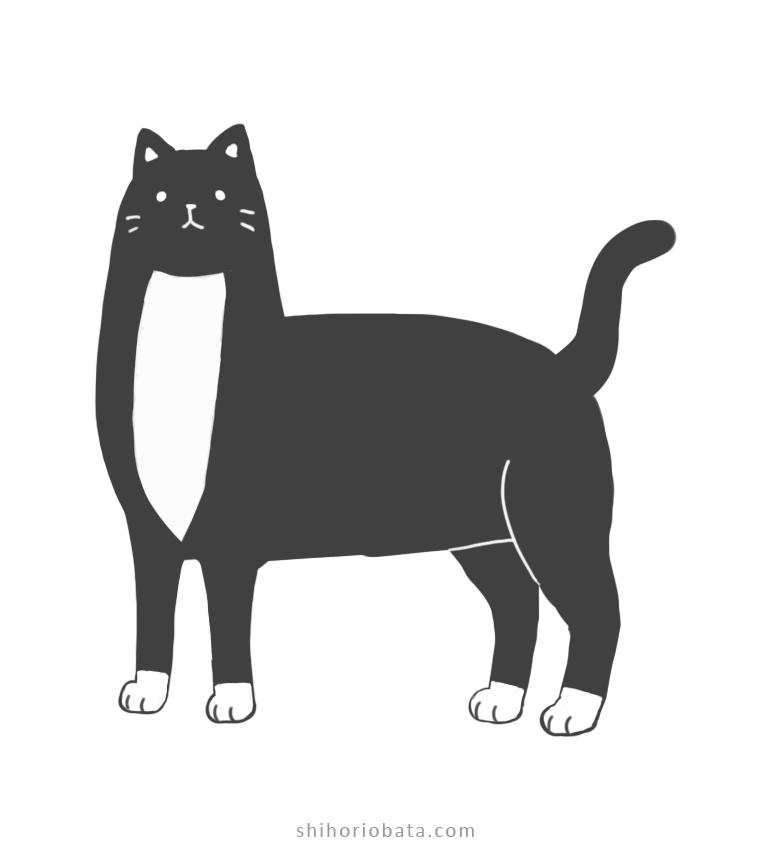 tuxedo cat drawing