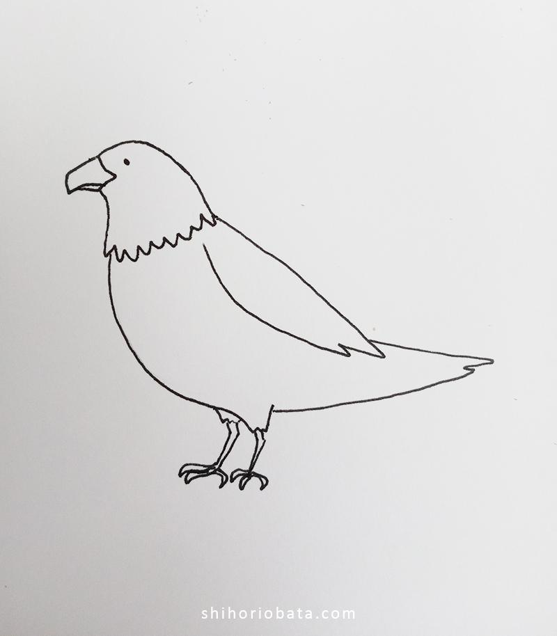 eagle drawing