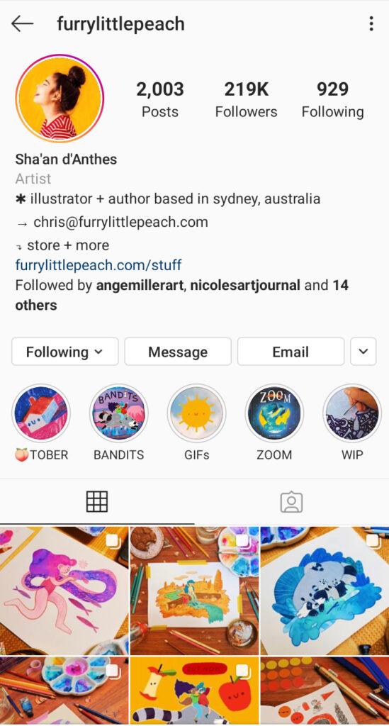 Furry Little Peach Artist Instagram bio