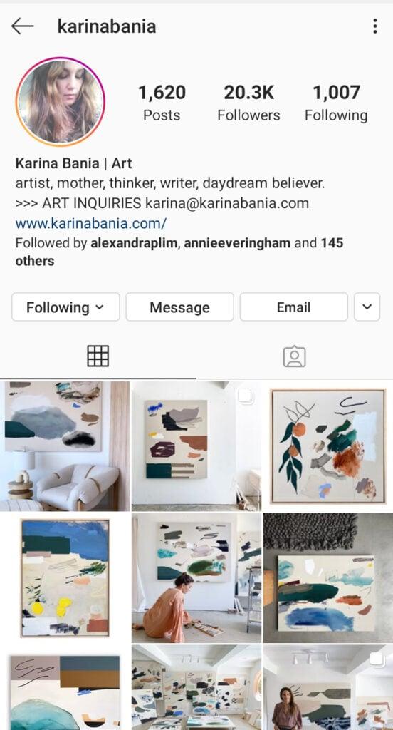 Karina Bania artist instagram bio