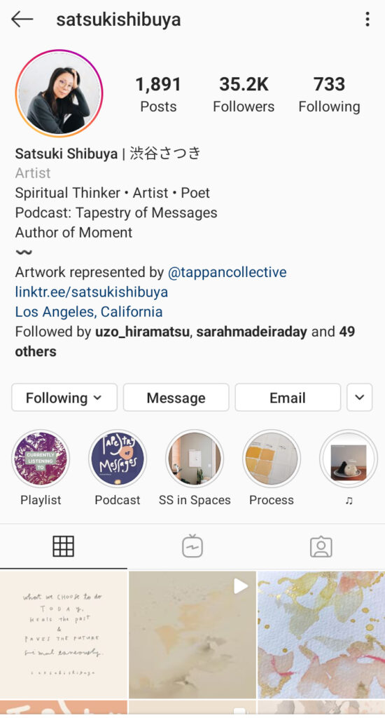 Satsuki Shibuya Artist Instagram bio