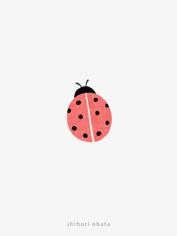 ladybug drawing art