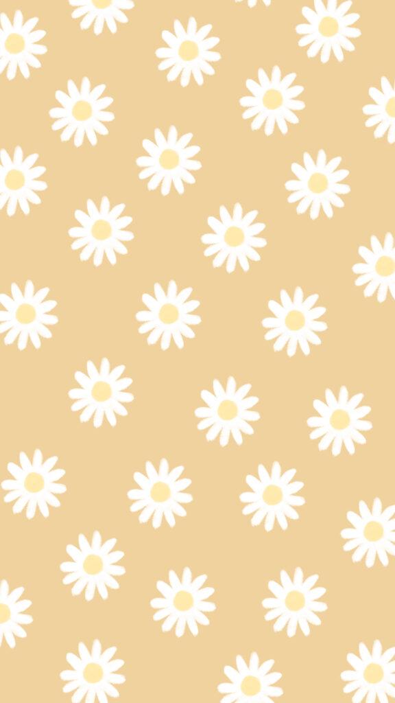daisy phone wallpaper background