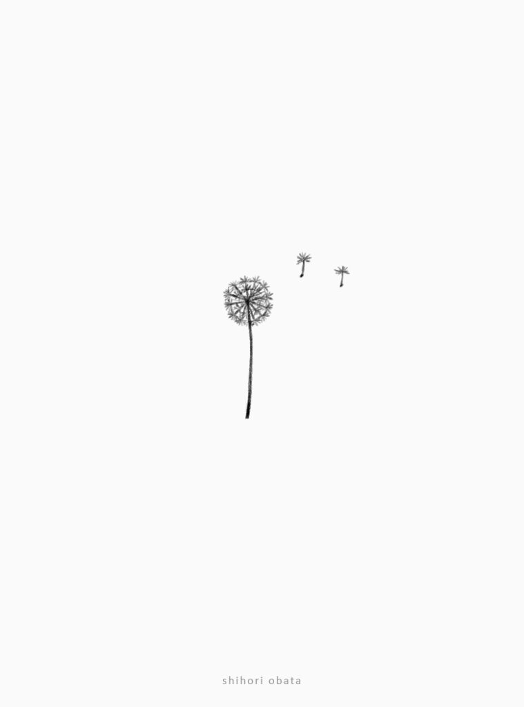 easy simple dandelion drawing