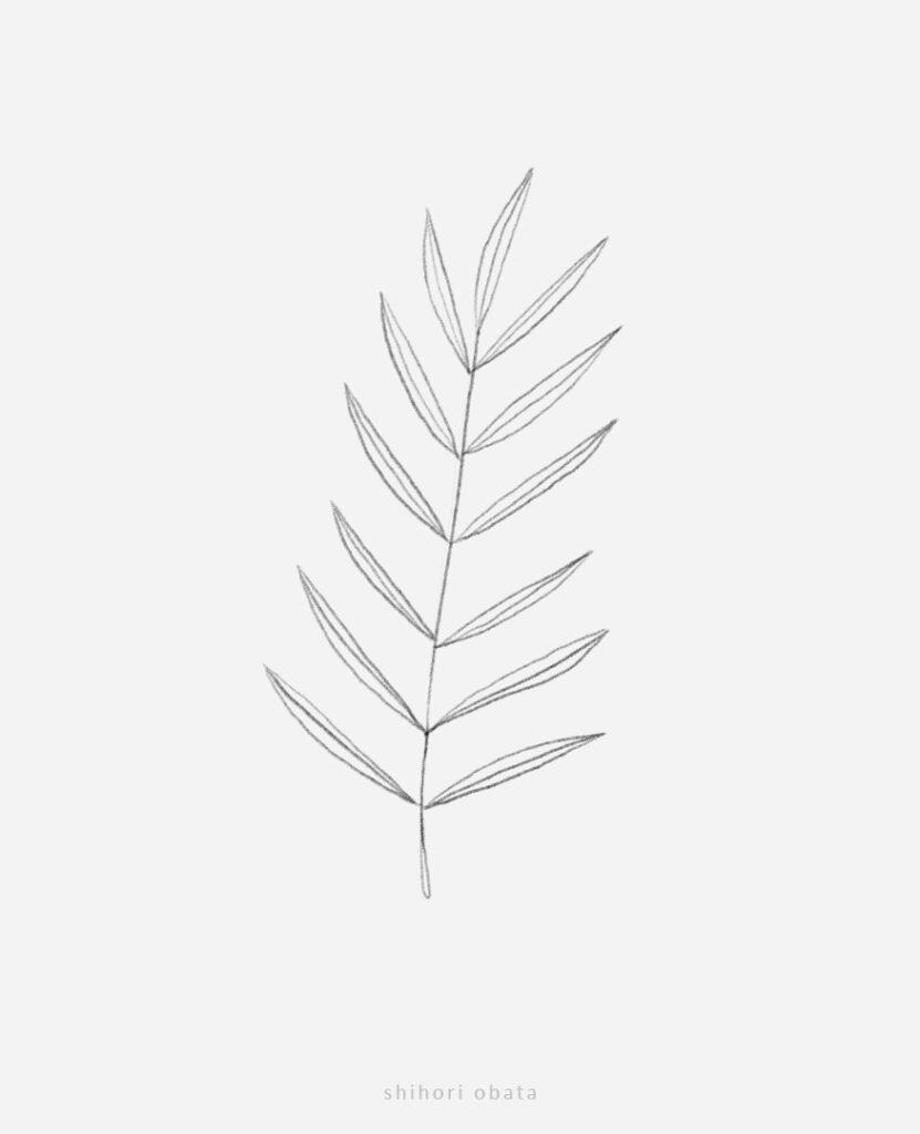 easy fern leaf drawing