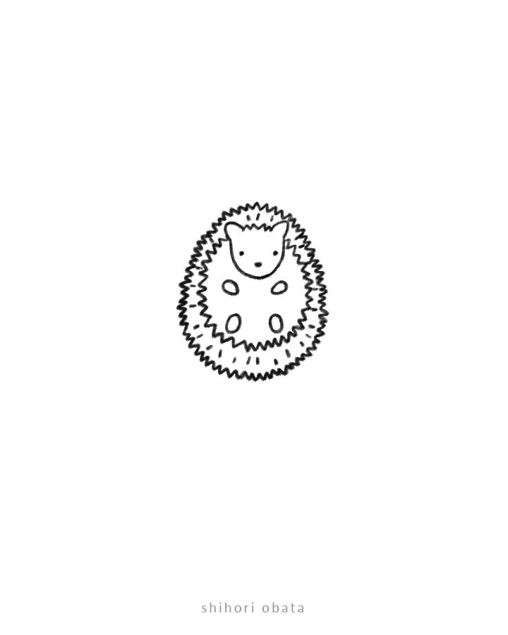 hedgehog drawing art
