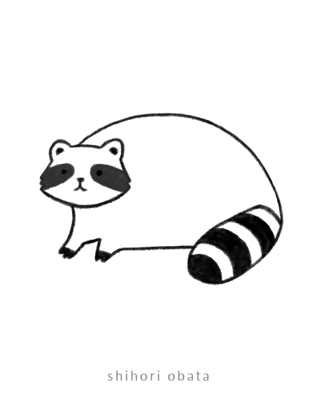 easy raccoon drawing
