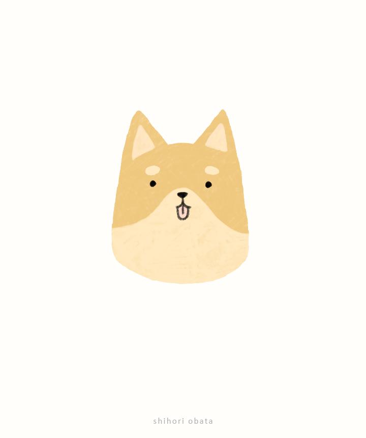 shiba dog drawing