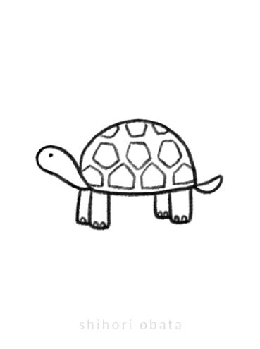 tortoise drawing