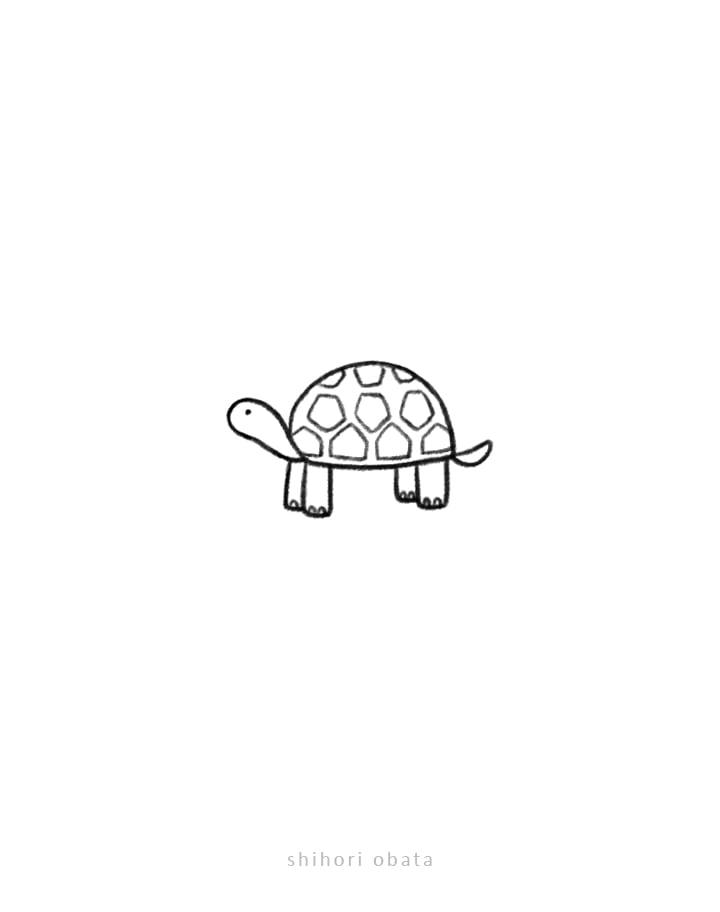 easy simple tortoise drawing