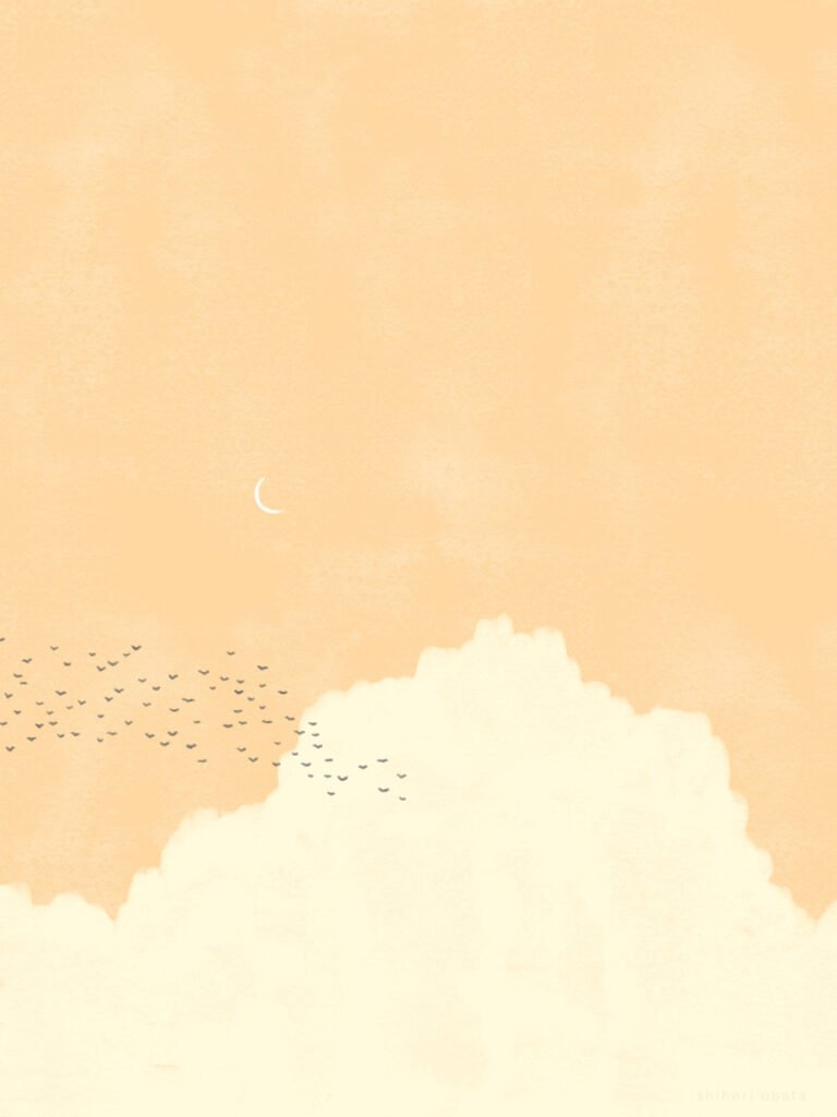 birds and clouds drawing