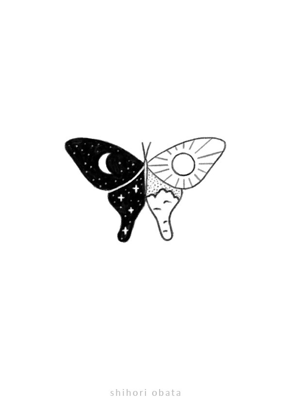 butterfly drawing easy