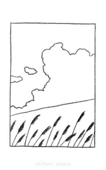 field drawing