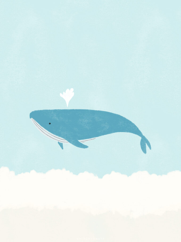 whale drawing easy illustration