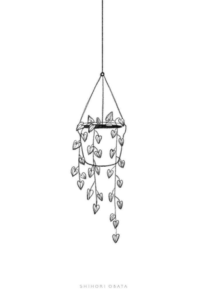 hanging plant drawing easy