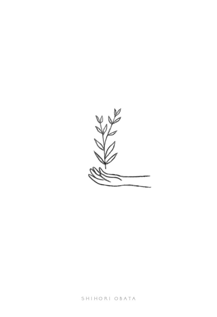 plant hand drawing