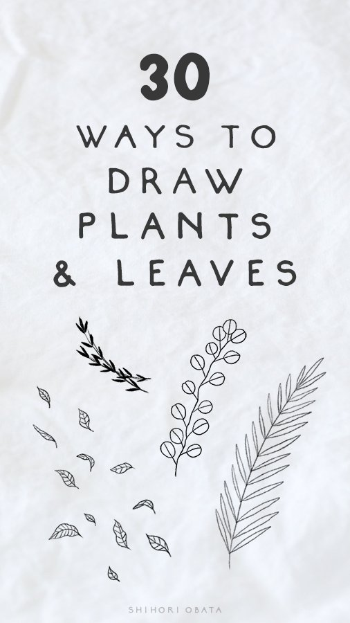 30 easy ways to draw plants and leaves