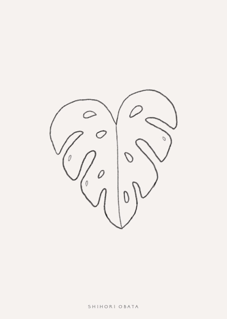 monstera leaf drawing