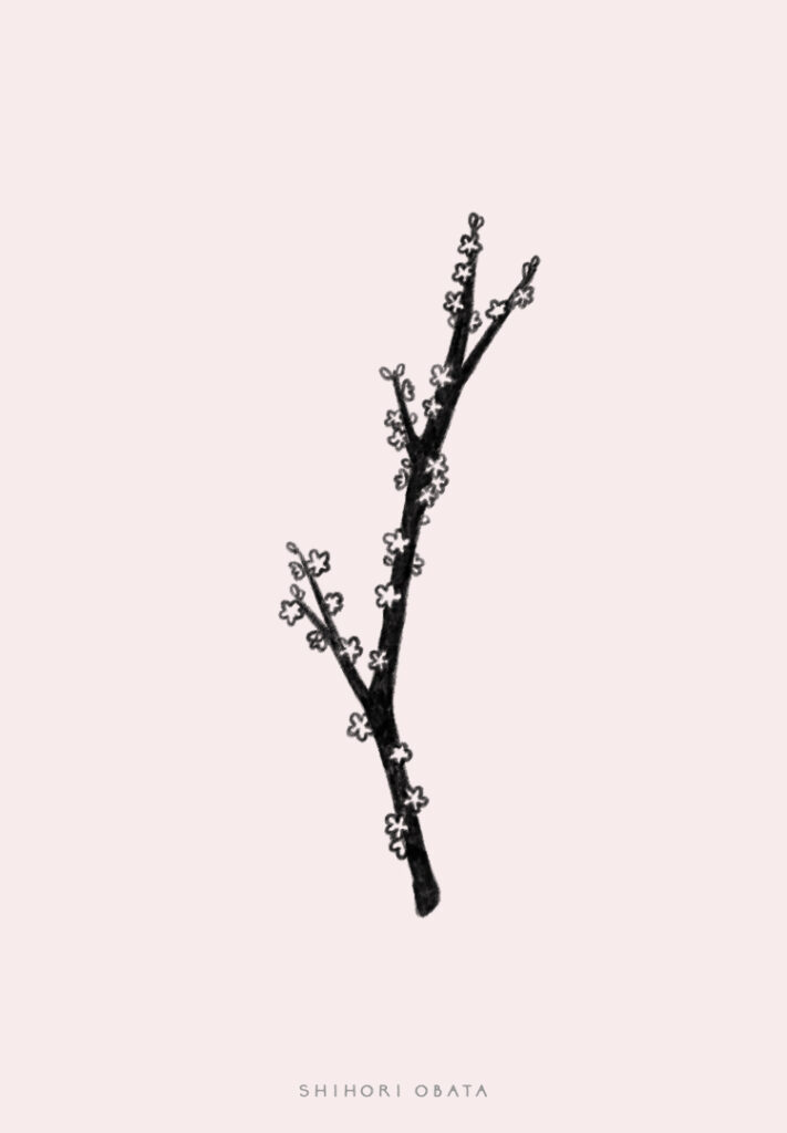 tree branch flowers drawing