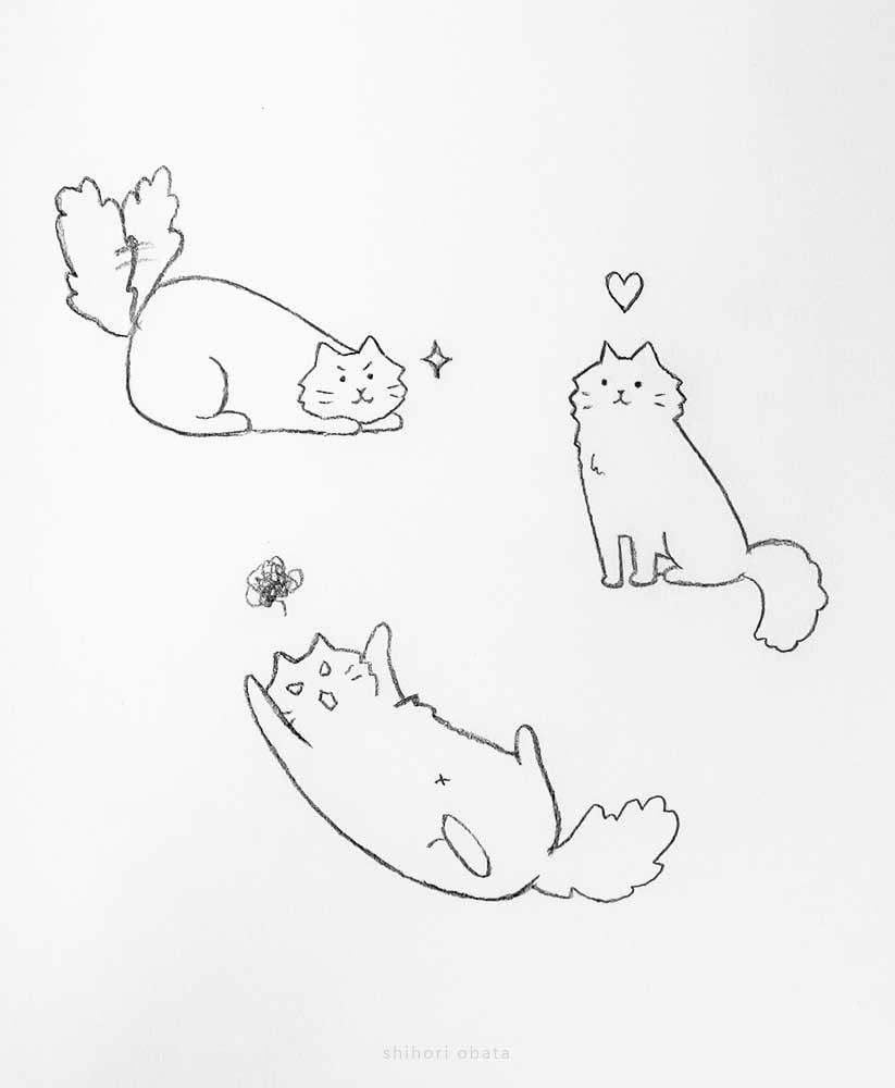 cat poses drawing