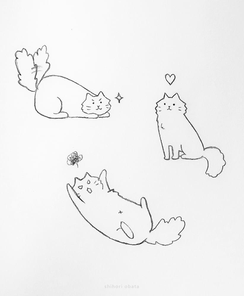 easy cute cat drawing